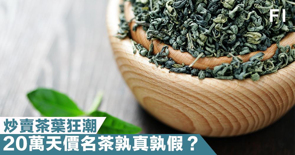 【真偽莫辦】炒賣茶葉狂潮!天價「名」茶孰真孰假?20萬仍有價無市!