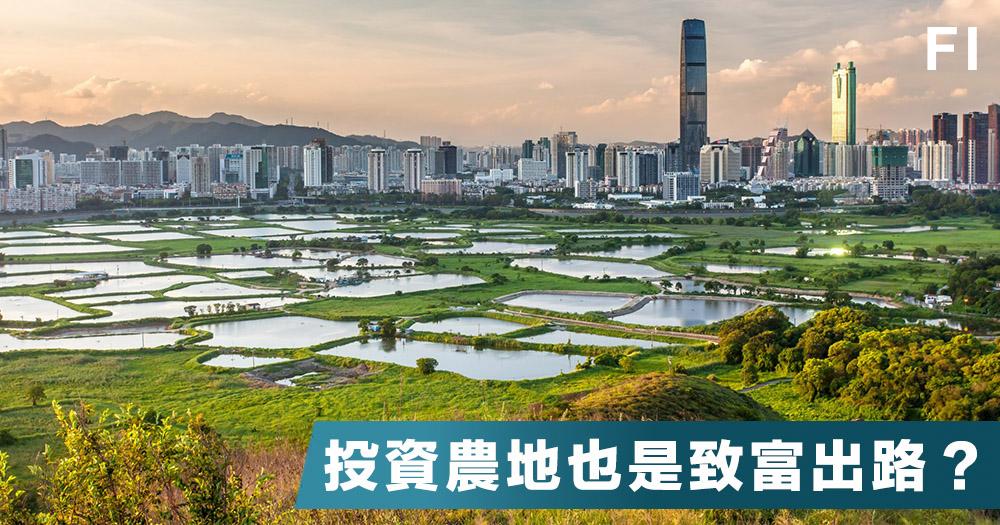 土地問題:分析香港農地的投資價值及增值法門|Starman資本攻略|Fortune Insight