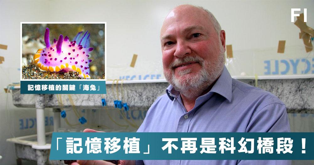 【生物科技】美國科學家成功在海兔進行「記憶移植」,或成解開人類記憶位置之謎的關鍵!