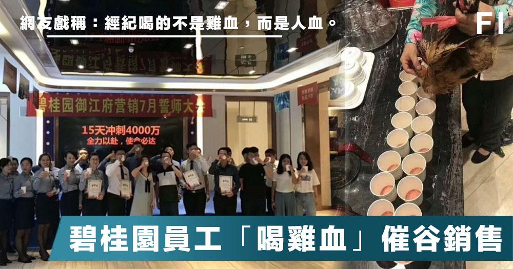 【誓師大會】碧桂園最近壞消息不斷,在員工誓師大會上竟集體「喝雞血」催谷銷售!