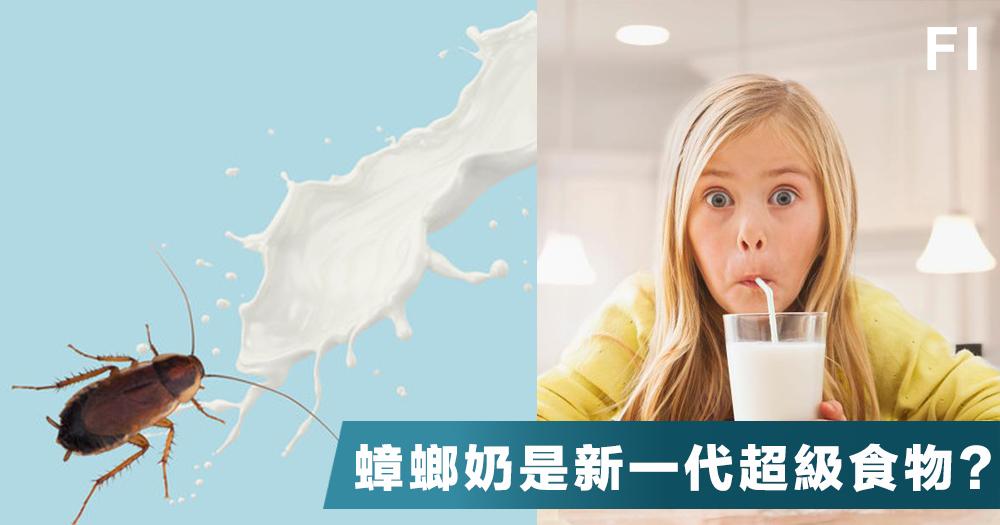 【超級食物】比牛奶營養多3倍,味道跟牛奶差不多,蟑螂奶你敢試嗎?