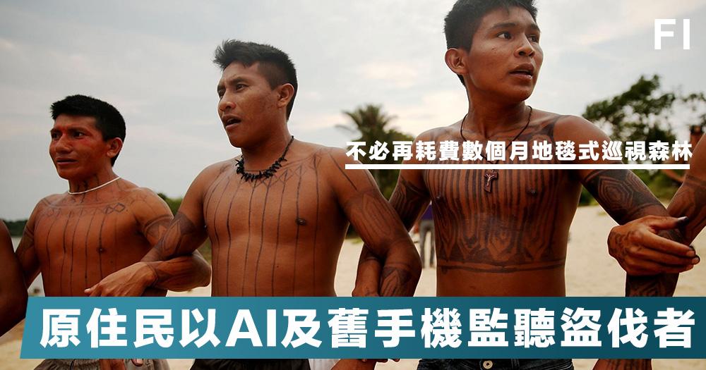 【循環再用】亞馬遜雨林盜伐的情況日益猖狂,巴西原住民以AI結合舊手機,佈下「天羅地網」監聽盜伐者!