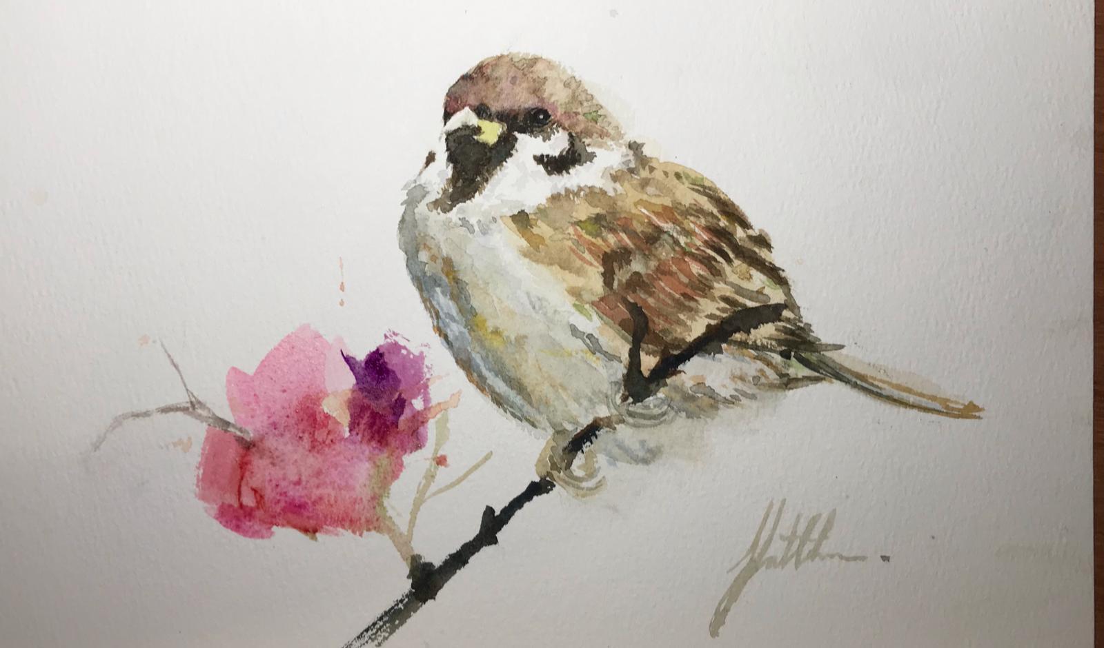 麻雀與花,Photo From Yatchun