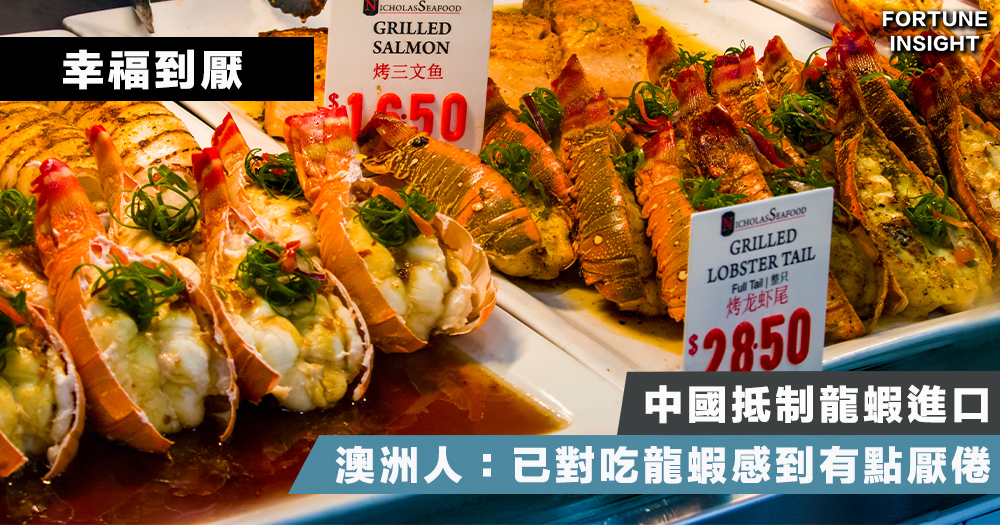 【幸福到厭】中國抵制龍蝦 澳洲人:已對吃龍蝦感到有點厭倦